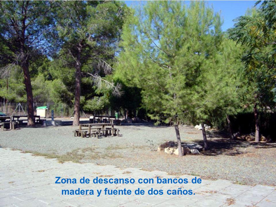 Zona de descanso con bancos de madera y fuente de dos caños.