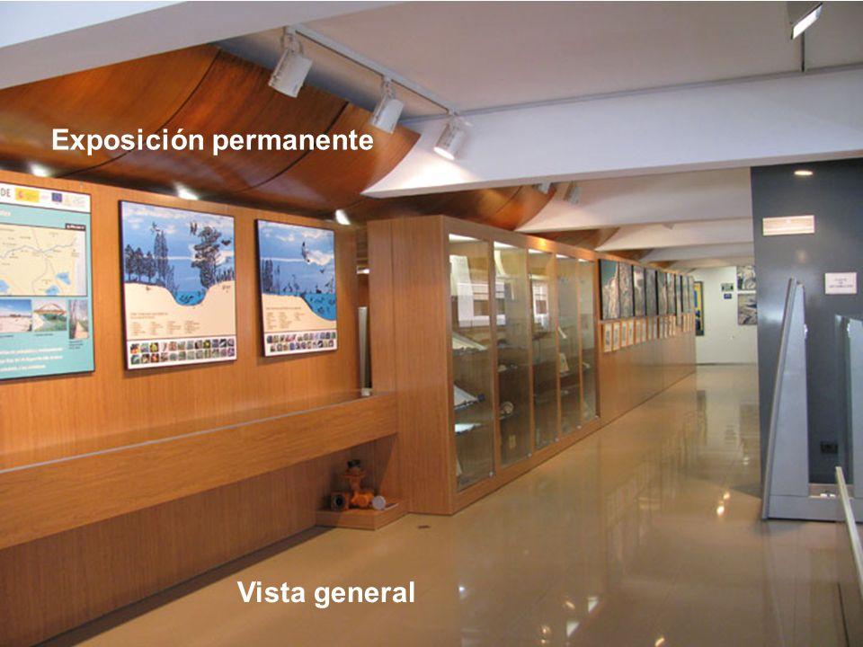 Exposición permanente