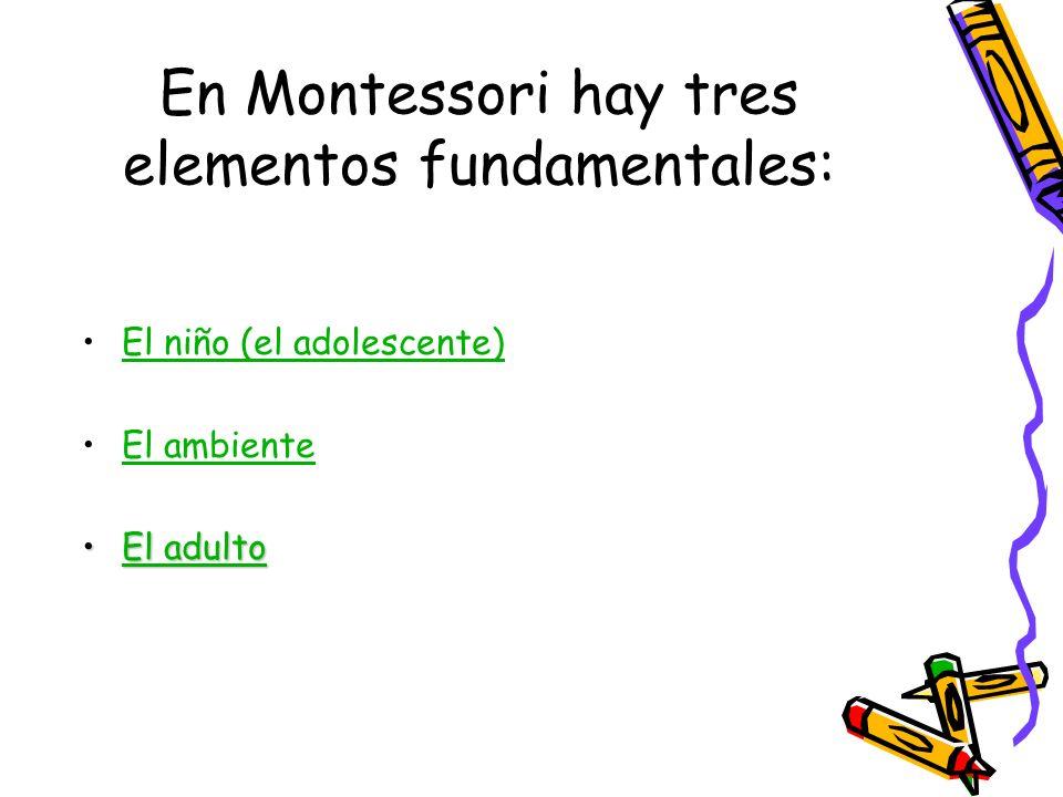 En Montessori hay tres elementos fundamentales: