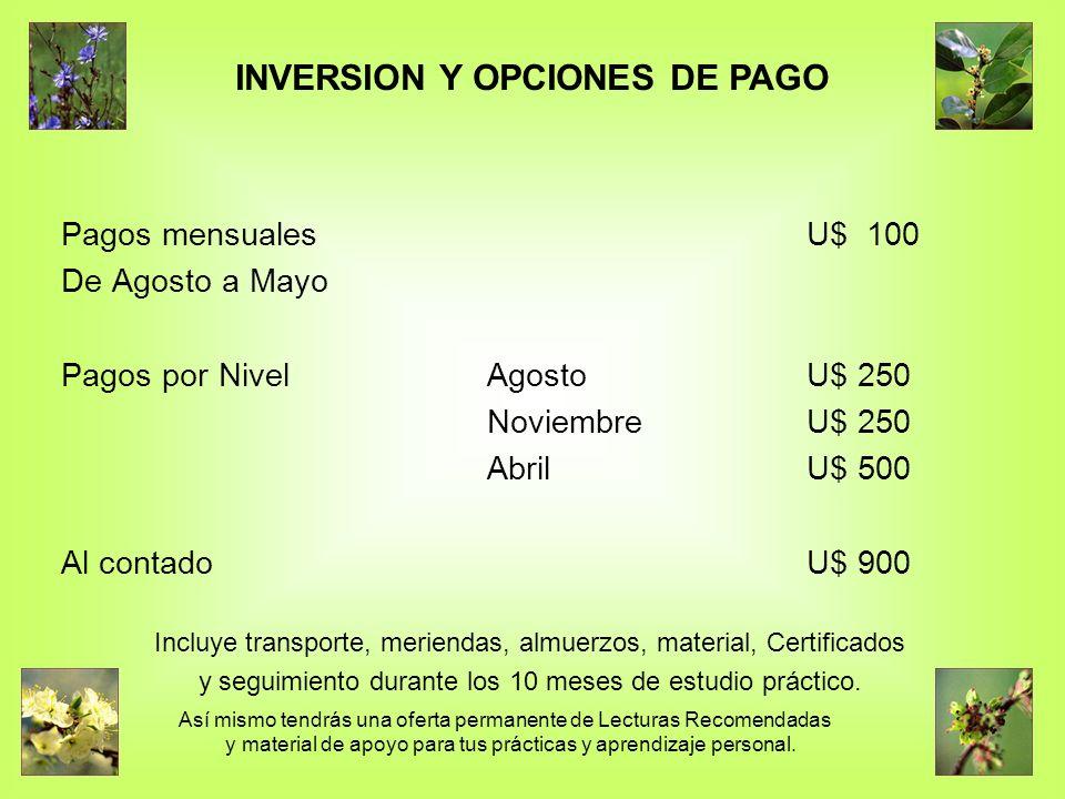 INVERSION Y OPCIONES DE PAGO