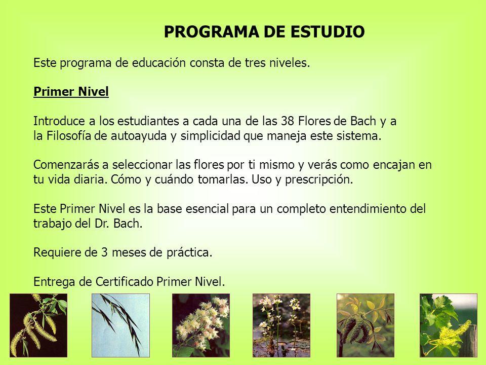 PROGRAMA DE ESTUDIO Este programa de educación consta de tres niveles.