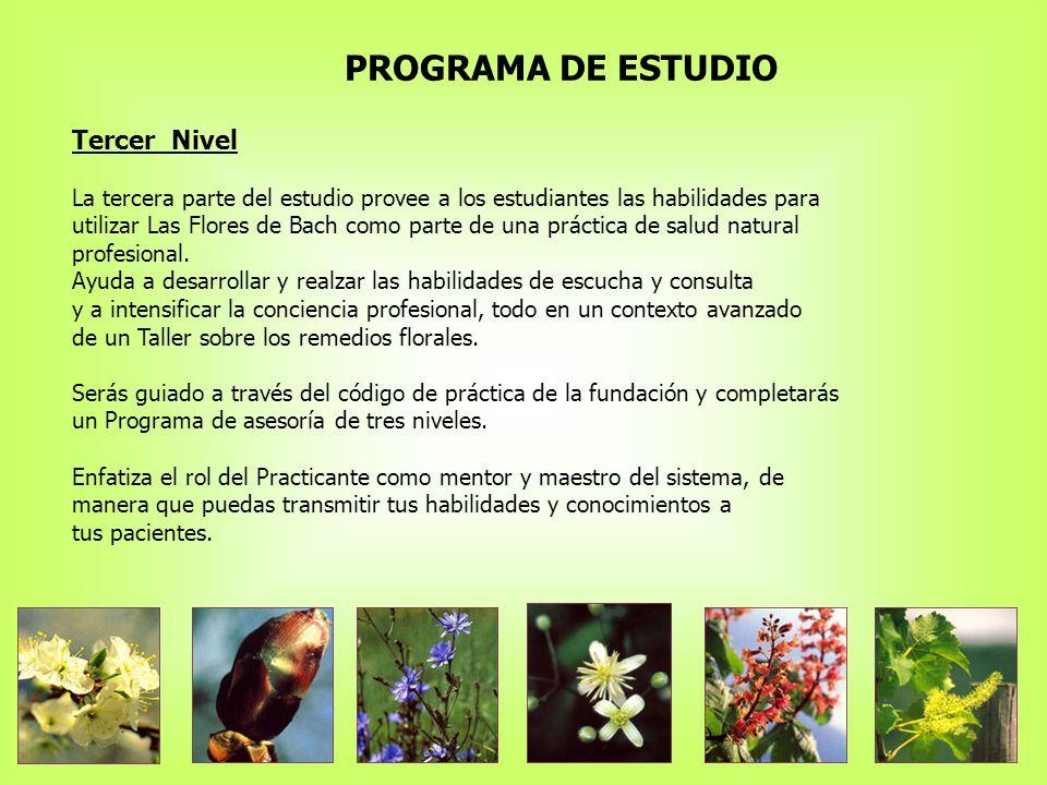 PROGRAMA DE ESTUDIO Tercer Nivel