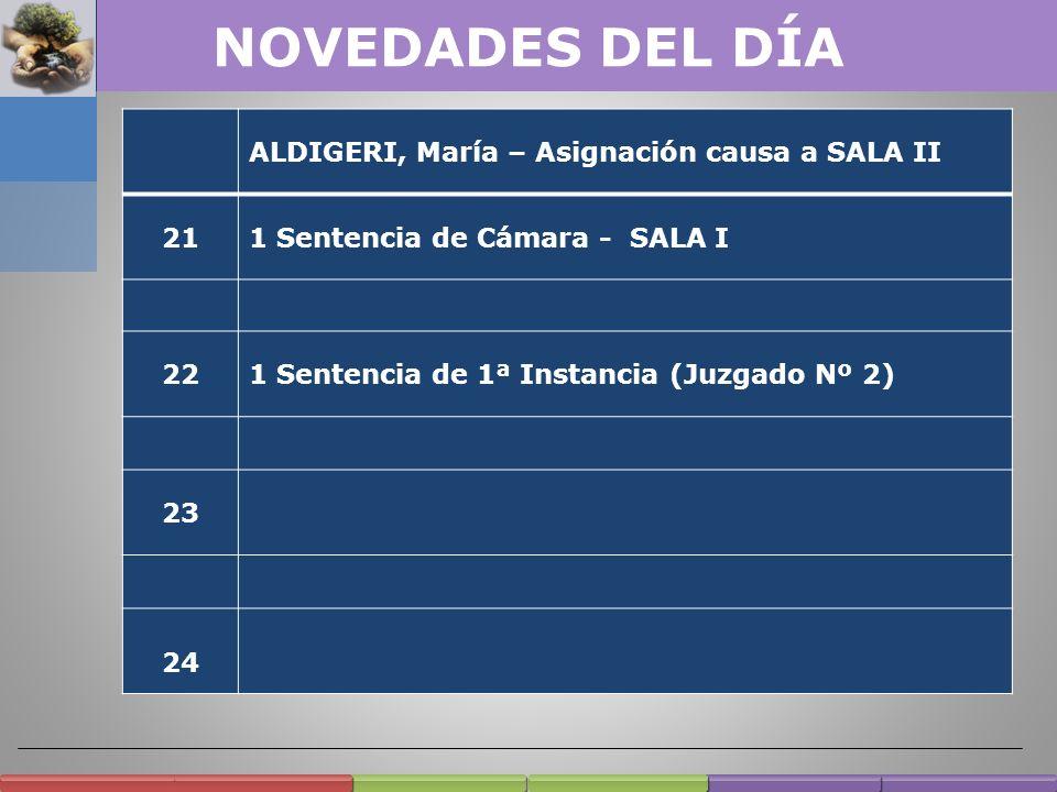 NOVEDADES DEL DÍA ALDIGERI, María – Asignación causa a SALA II 21