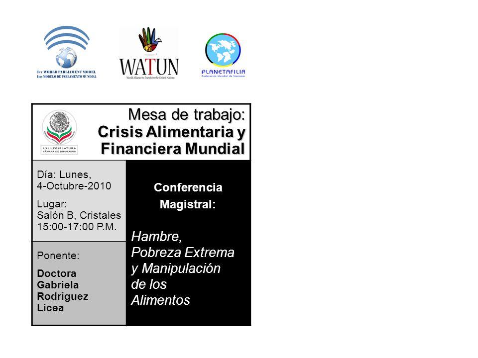 Mesa de trabajo: Crisis Alimentaria y Financiera Mundial Hambre,