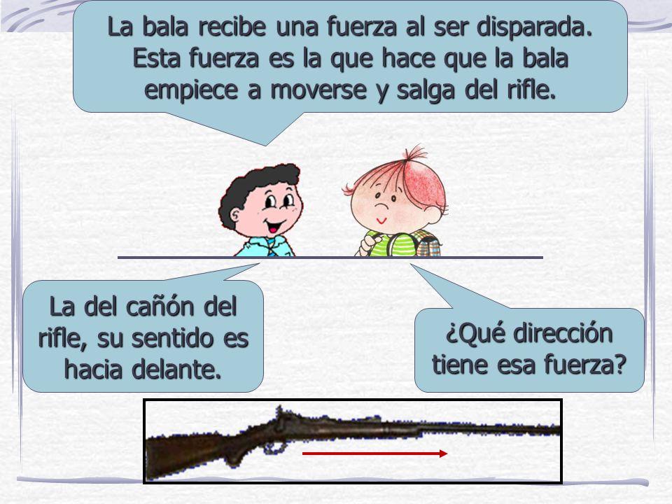 La del cañón del rifle, su sentido es hacia delante.