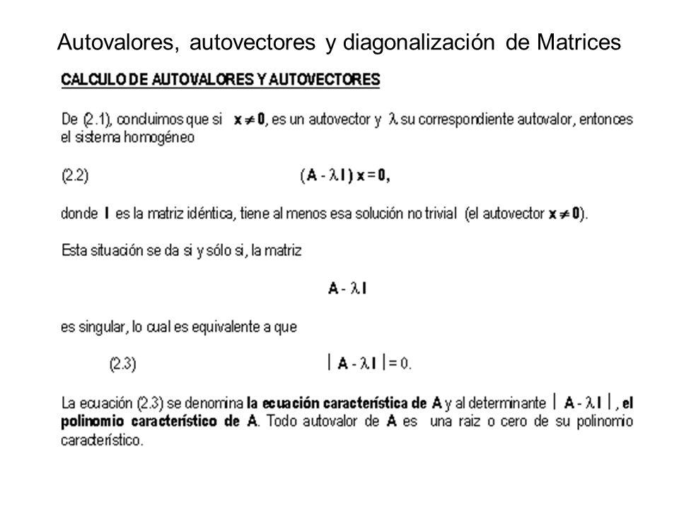 Autovalores, autovectores y diagonalización de Matrices