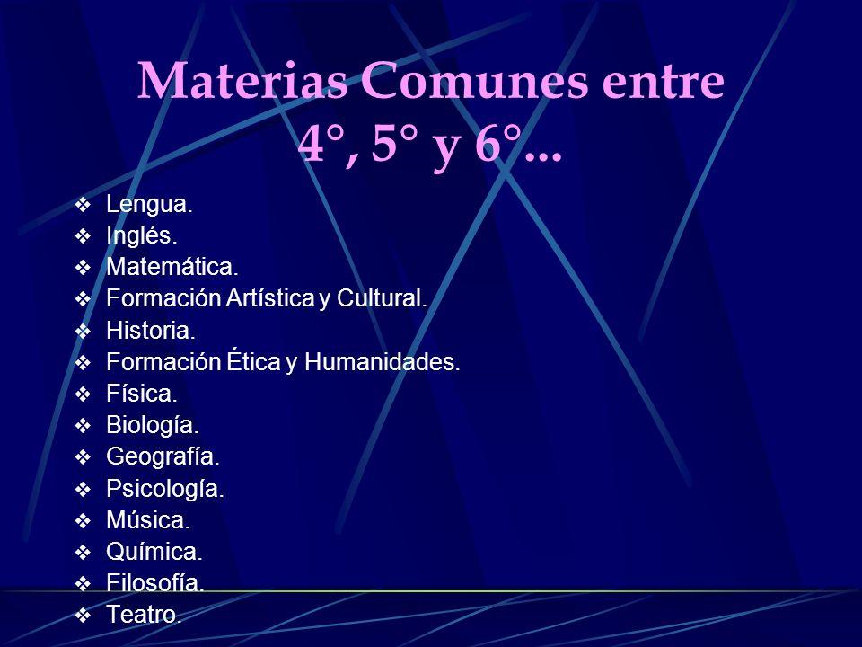 Materias Comunes entre 4°, 5° y 6°...