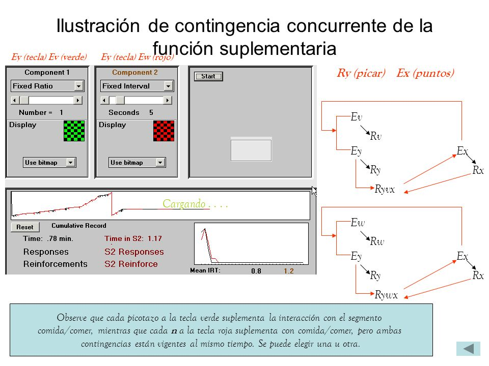 Ilustración de contingencia concurrente de la función suplementaria