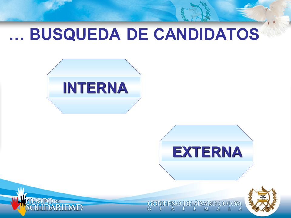 … BUSQUEDA DE CANDIDATOS