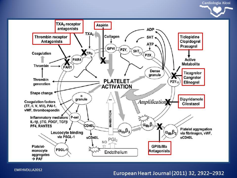 European Heart Journal (2011) 32, 2922–2932