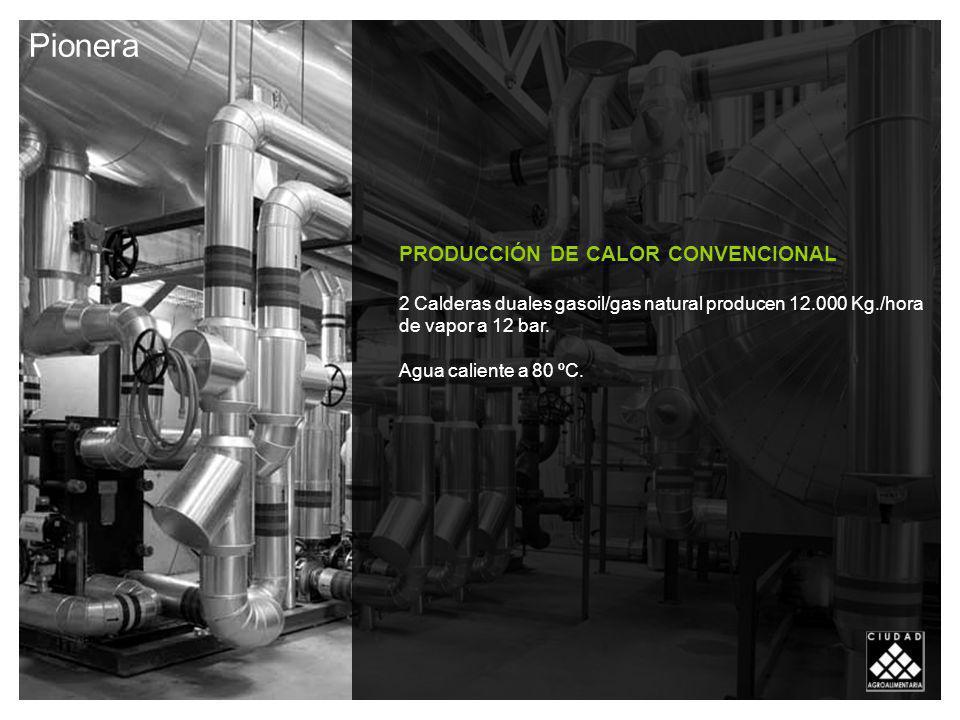 Pionera PRODUCCIÓN DE CALOR CONVENCIONAL