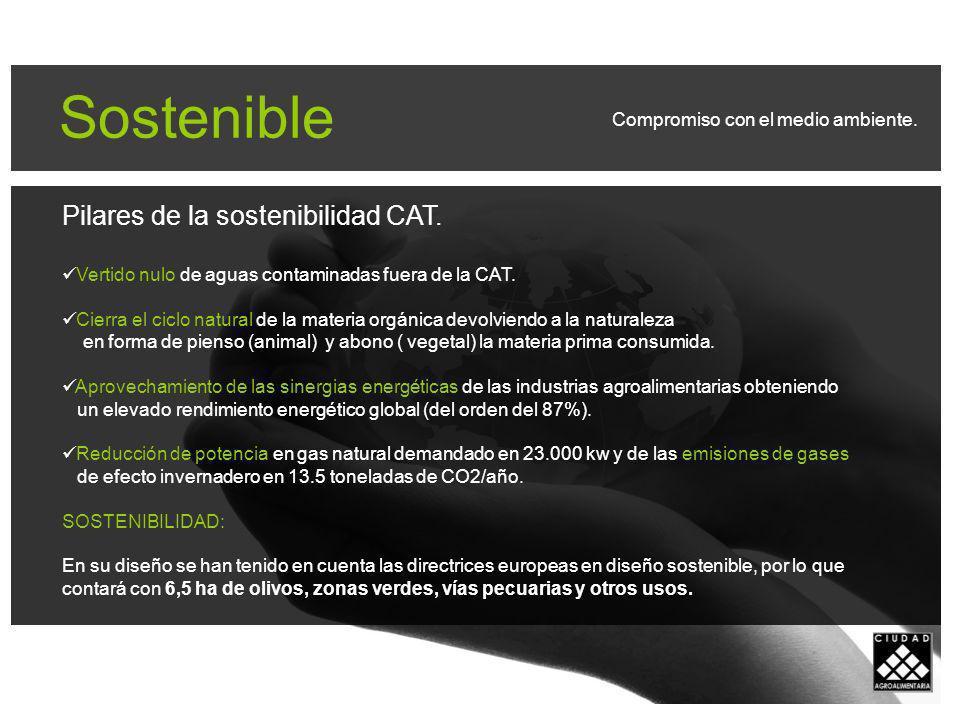 Sostenible Pilares de la sostenibilidad CAT.