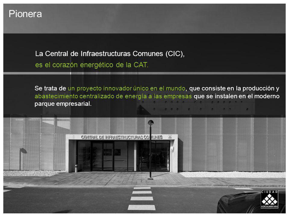 La Central de Infraestructuras Comunes (CIC),