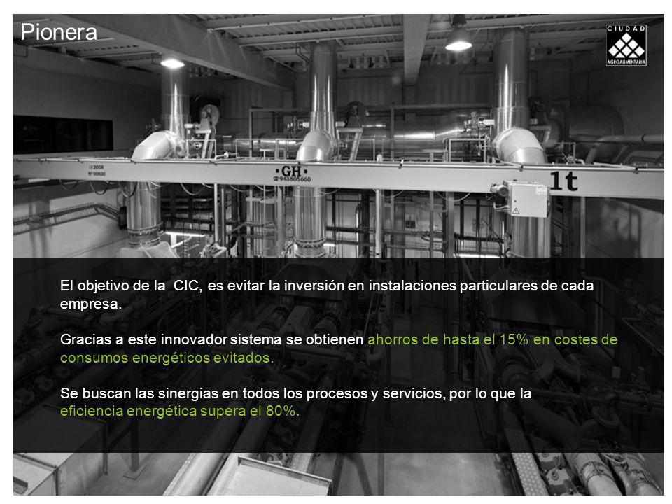 Pionera El objetivo de la CIC, es evitar la inversión en instalaciones particulares de cada empresa.