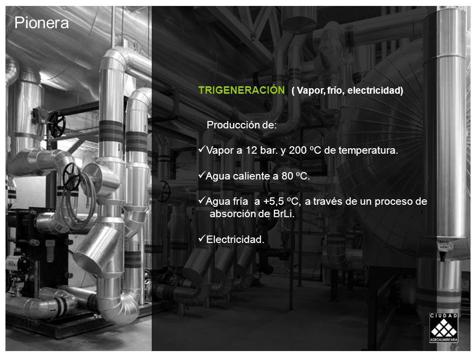 Pionera TRIGENERACIÓN ( Vapor, frío, electricidad) Producción de: