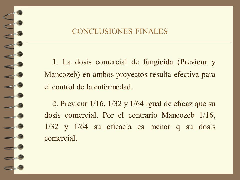 CONCLUSIONES FINALES 1. La dosis comercial de fungicida (Previcur y Mancozeb) en ambos proyectos resulta efectiva para el control de la enfermedad.