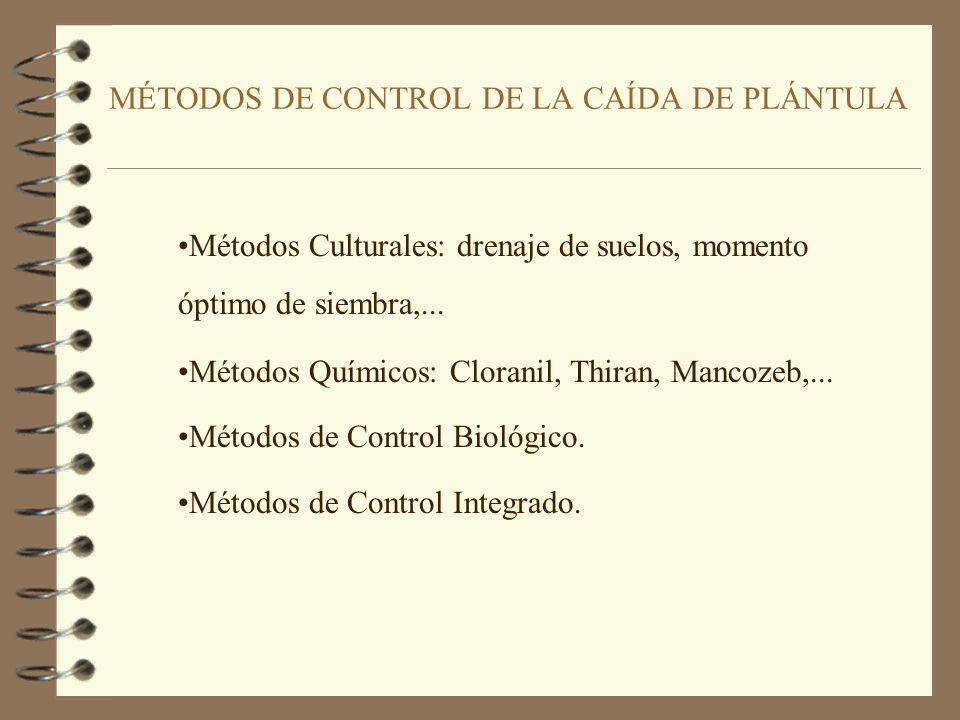 MÉTODOS DE CONTROL DE LA CAÍDA DE PLÁNTULA