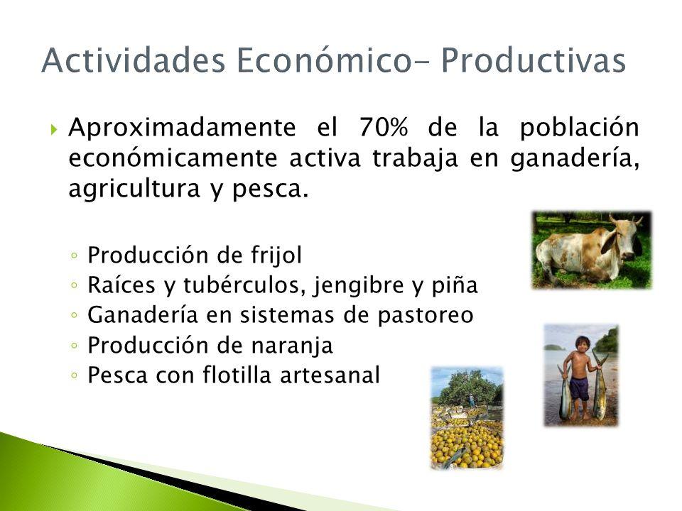 Actividades Económico- Productivas