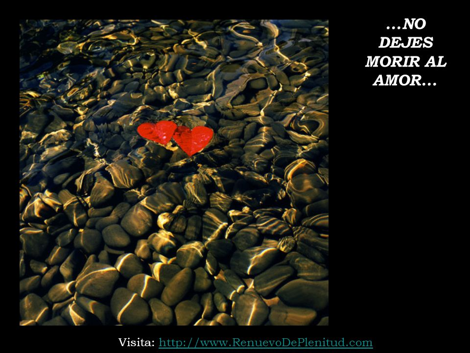 ...NO DEJES MORIR AL AMOR... Visita: http://www.RenuevoDePlenitud.com