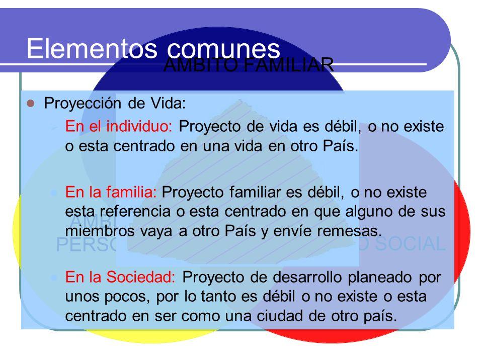 Elementos comunes Proyección de Vida: