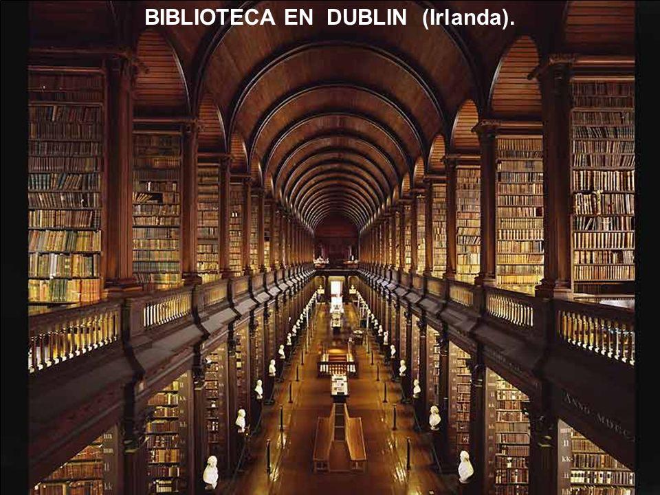 BIBLIOTECA EN DUBLIN (Irlanda).