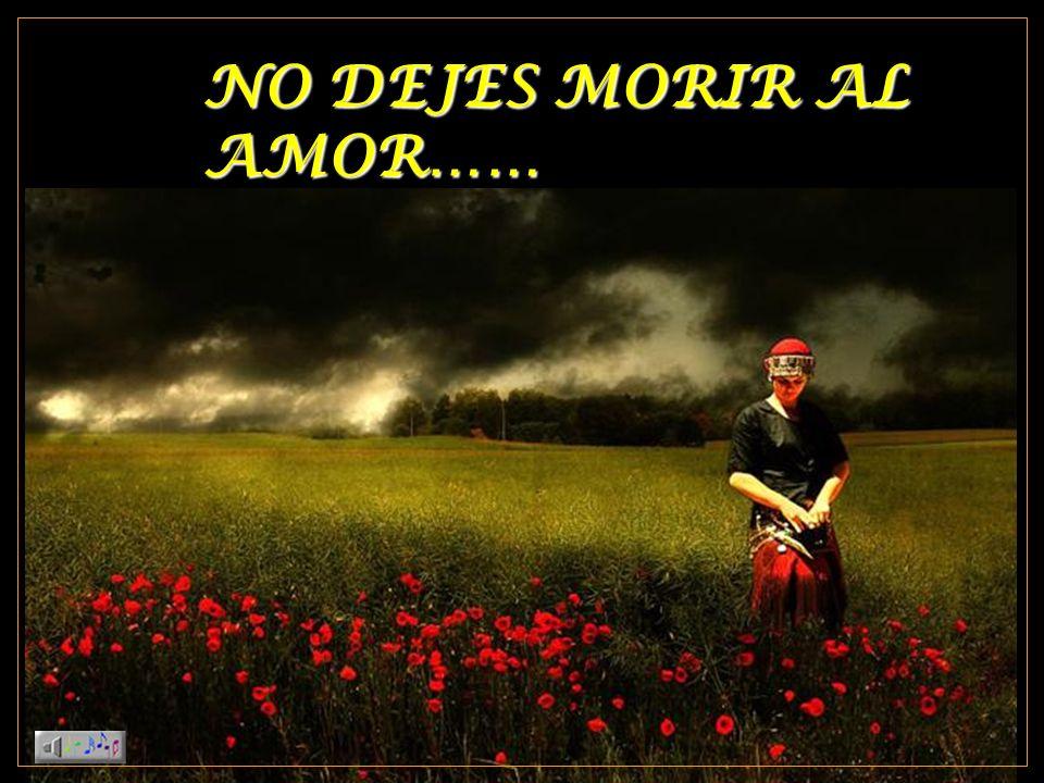 NO DEJES MORIR AL AMOR……