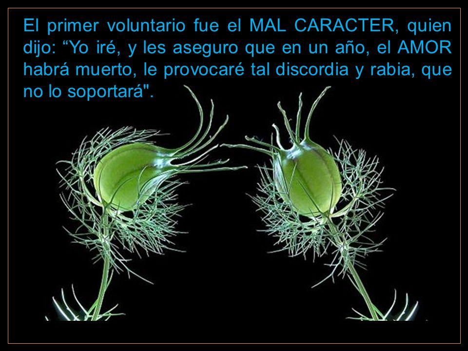 El primer voluntario fue el MAL CARACTER, quien dijo: Yo iré, y les aseguro que en un año, el AMOR habrá muerto, le provocaré tal discordia y rabia, que no lo soportará .
