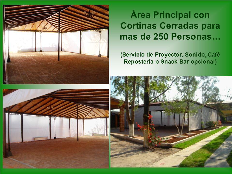 Área Principal con Cortinas Cerradas para mas de 250 Personas… (Servicio de Proyector, Sonido, Café Repostería o Snack-Bar opcional)