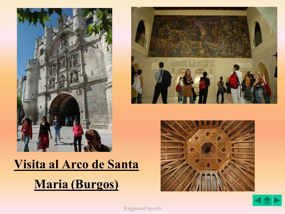 Visita al Arco de Santa Maria (Burgos)