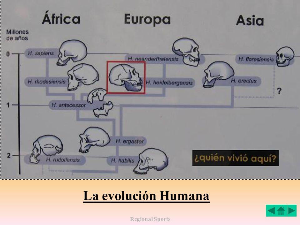 La evolución Humana Regional Sports