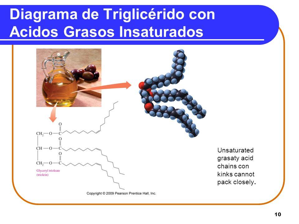 Diagrama de Triglicérido con Acidos Grasos Insaturados