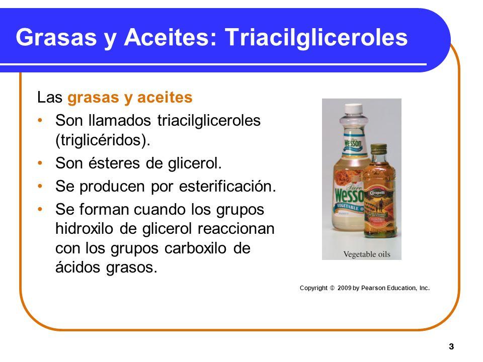 Grasas y Aceites: Triacilgliceroles