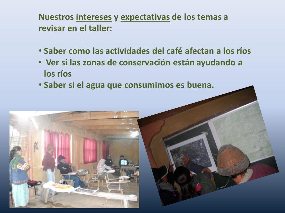Nuestros intereses y expectativas de los temas a revisar en el taller: