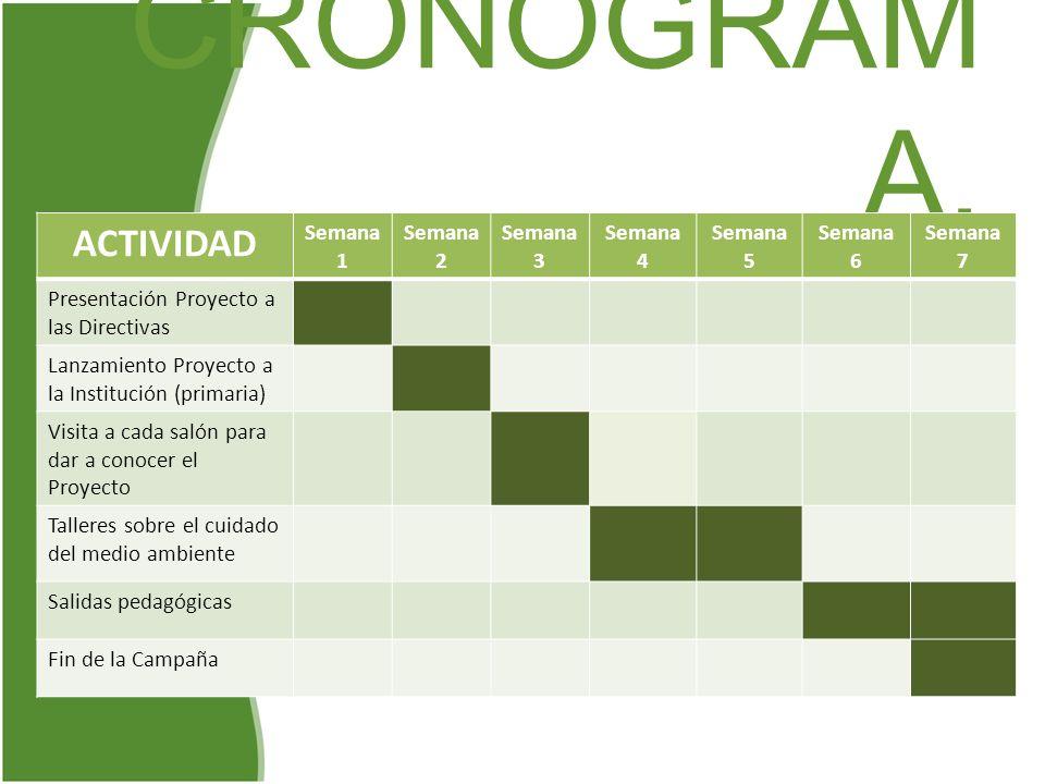 CRONOGRAMA. ACTIVIDAD Semana 1 Semana 2 Semana 3 Semana 4 Semana 5