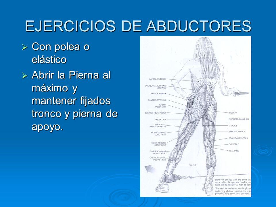 EJERCICIOS DE ABDUCTORES