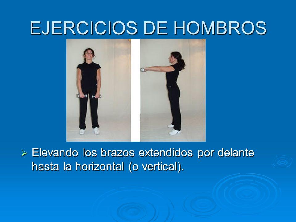 EJERCICIOS DE HOMBROS Elevando los brazos extendidos por delante hasta la horizontal (o vertical).
