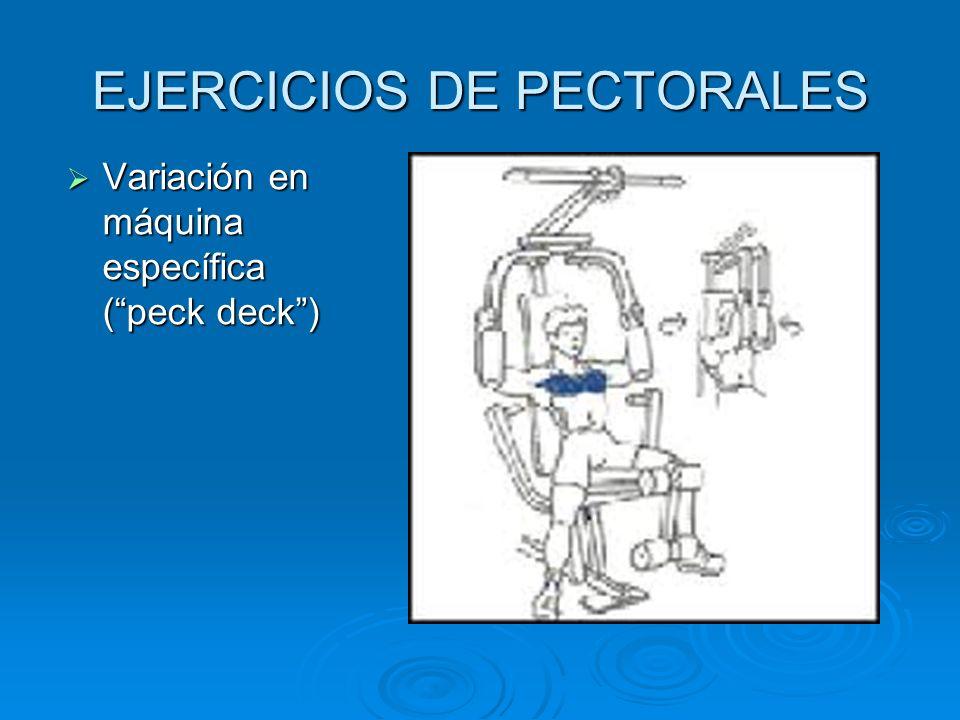 EJERCICIOS DE PECTORALES
