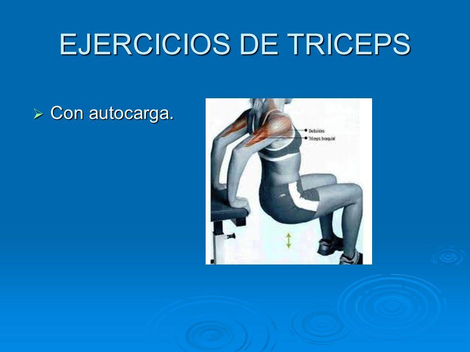 EJERCICIOS DE TRICEPS Con autocarga.