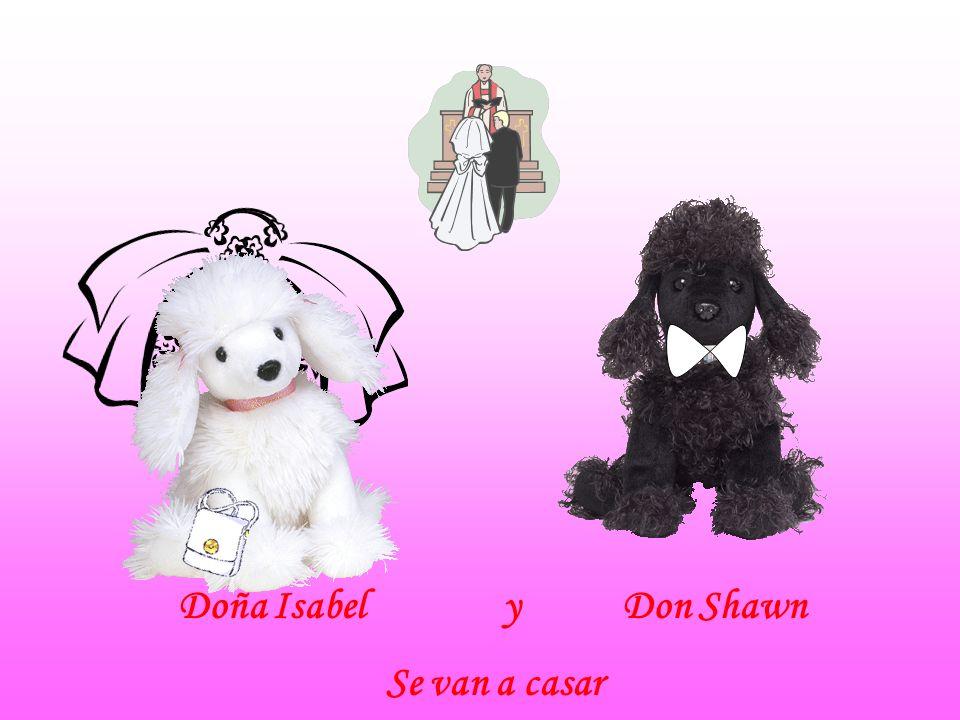 Doña Isabel y Don Shawn Se van a casar