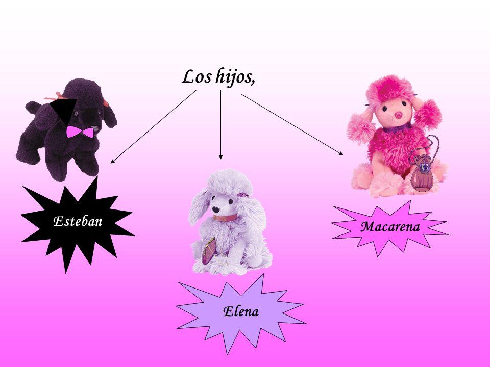 Los hijos, Esteban Macarena Elena