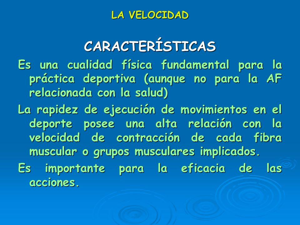 LA VELOCIDAD CARACTERÍSTICAS. Es una cualidad física fundamental para la práctica deportiva (aunque no para la AF relacionada con la salud)