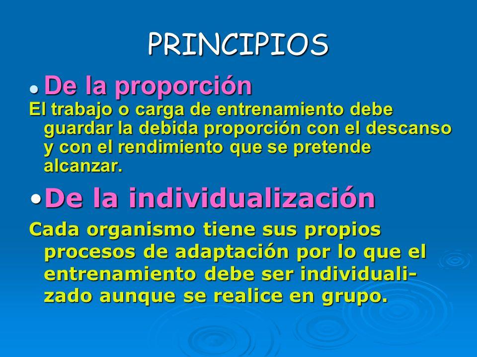 PRINCIPIOS De la proporción De la individualización