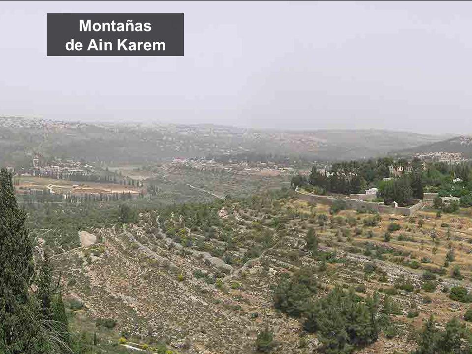 Montañas de Ain Karem