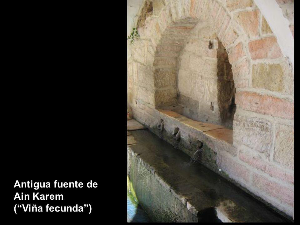 Antigua fuente de Ain Karem