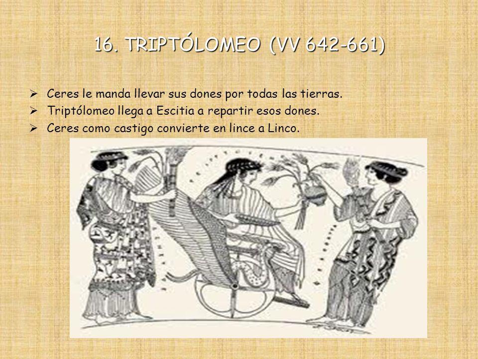 16. TRIPTÓLOMEO (VV 642-661) Ceres le manda llevar sus dones por todas las tierras. Triptólomeo llega a Escitia a repartir esos dones.
