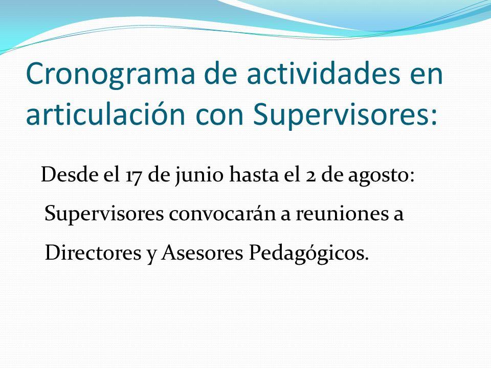 Cronograma de actividades en articulación con Supervisores: