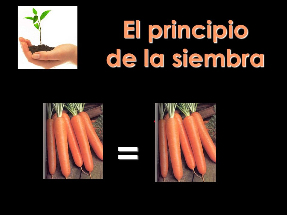 El principio de la siembra