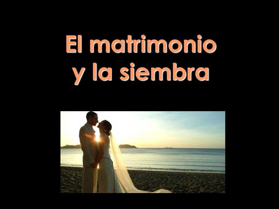 El matrimonio y la siembra