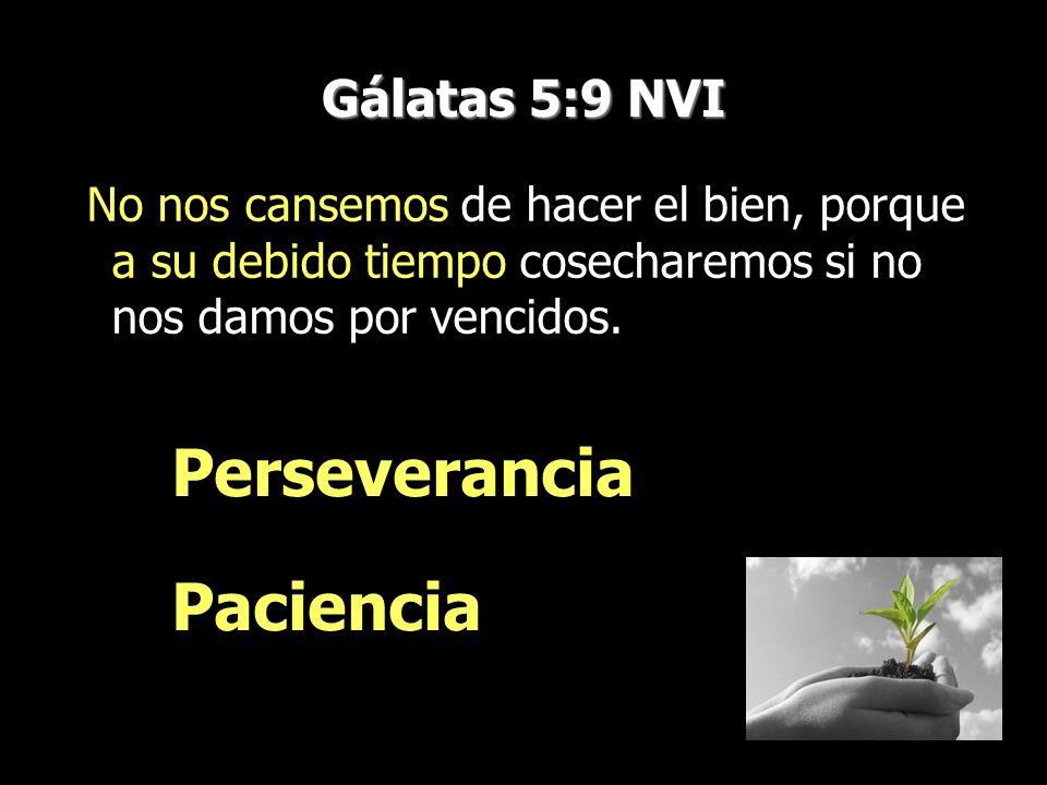 Perseverancia Paciencia Gálatas 5:9 NVI