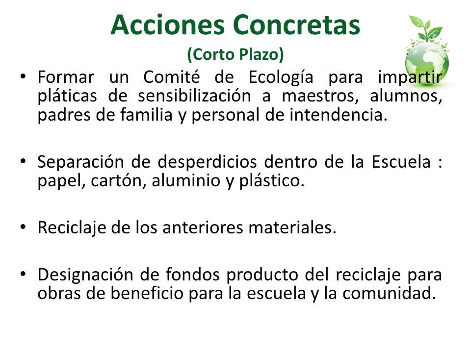 Acciones Concretas (Corto Plazo)